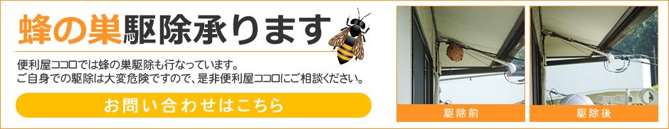 蜂の巣駆除承ります